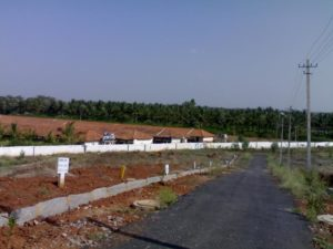 Residential Land1